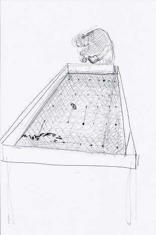 What's in a piece of soil, zwarte balpen op papier, 29,7cm x 21cm, 2010